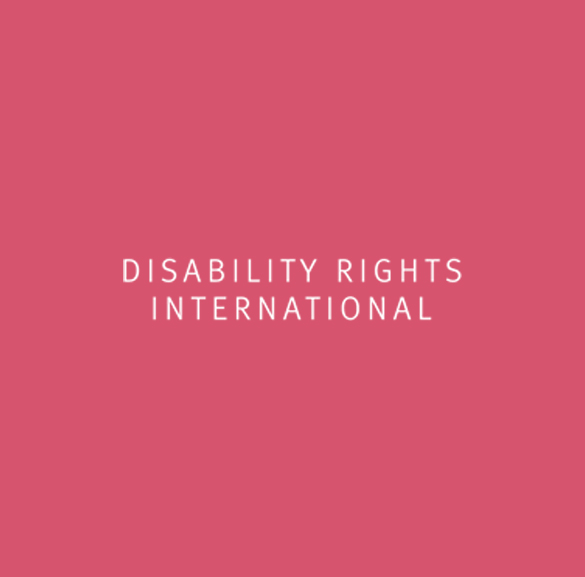 01-CF-homepage-disability-rights-international-logo